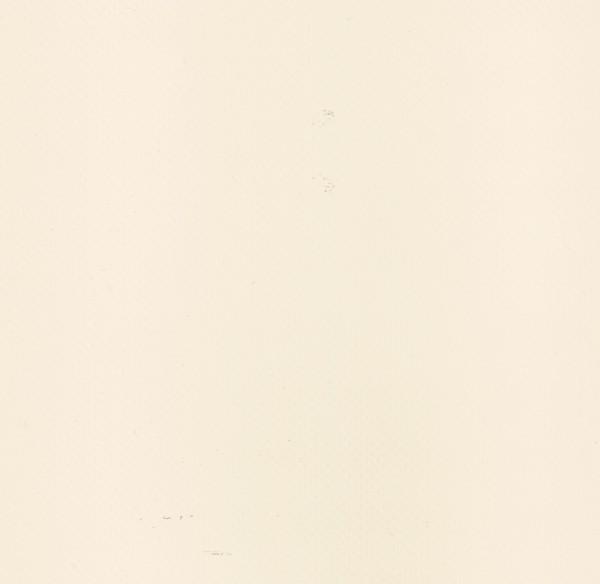 Planenstoff PVC elfenbein FR lackiert